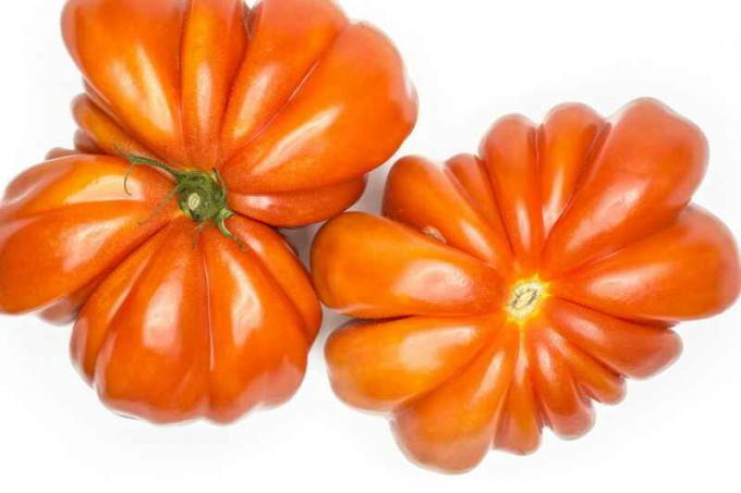 "The secrets of growing tomatoes ""beef heart"""